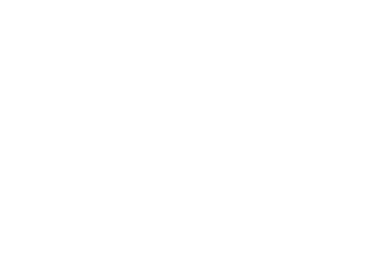 Wooden Stone Consulting